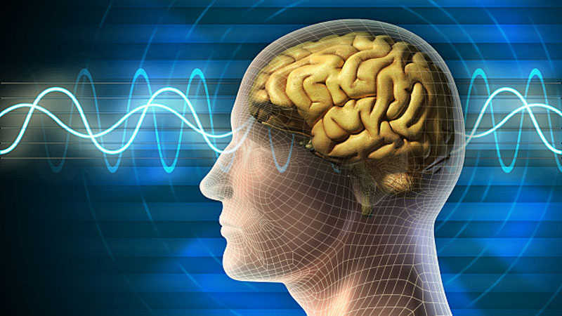 'Mind reading' technology decodes complex thoughts