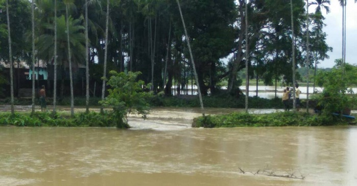 With heavy rains in Odisha ,government sought the help of the army and the air force