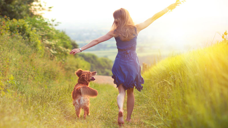 Secret to thriving decoded: Scientists create 'shopping list' for happiness, success
