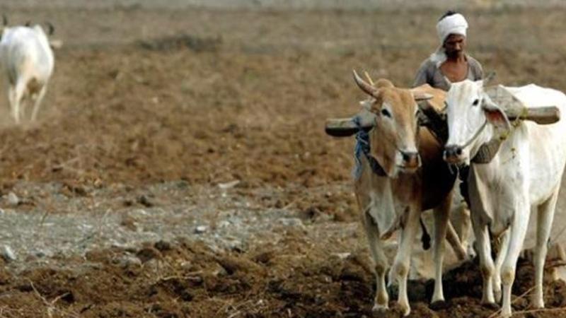 Uttar Pradesh shame! Farmers get loan wavier from Rs 1 to Rs 215