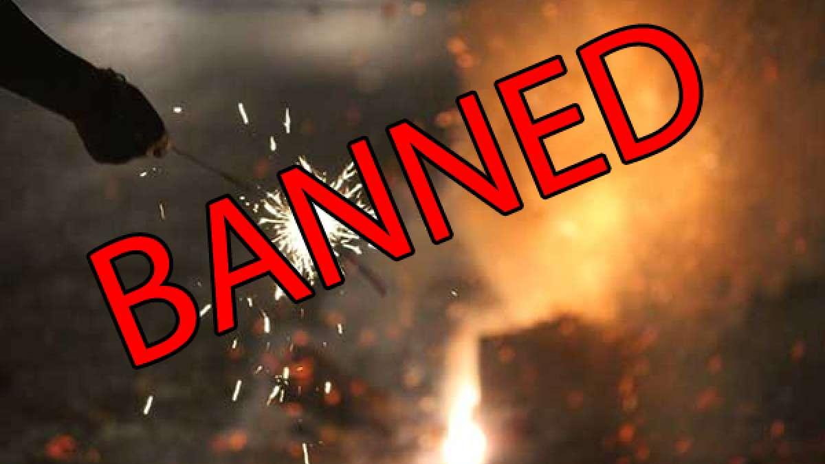 Supreme Court bans sale of firecrackers in New Delhi