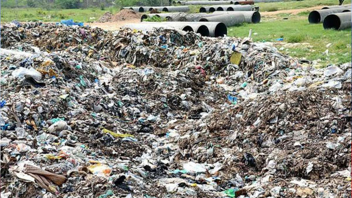 NGT rules fine on dumping waste in public