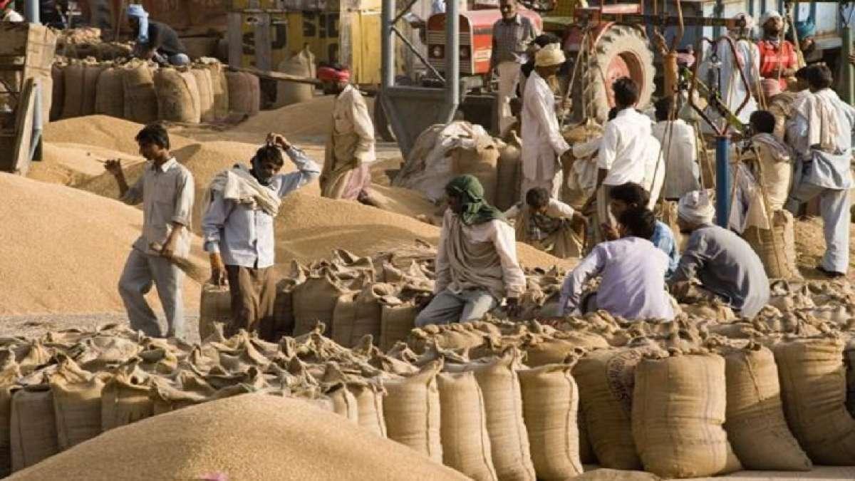 Uttar Pradesh began functioning 5,000 wheat purchase centres