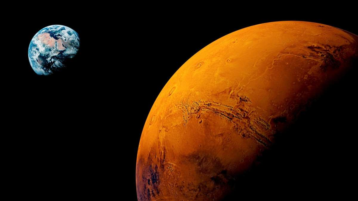 Tree stump on Mars red Planet
