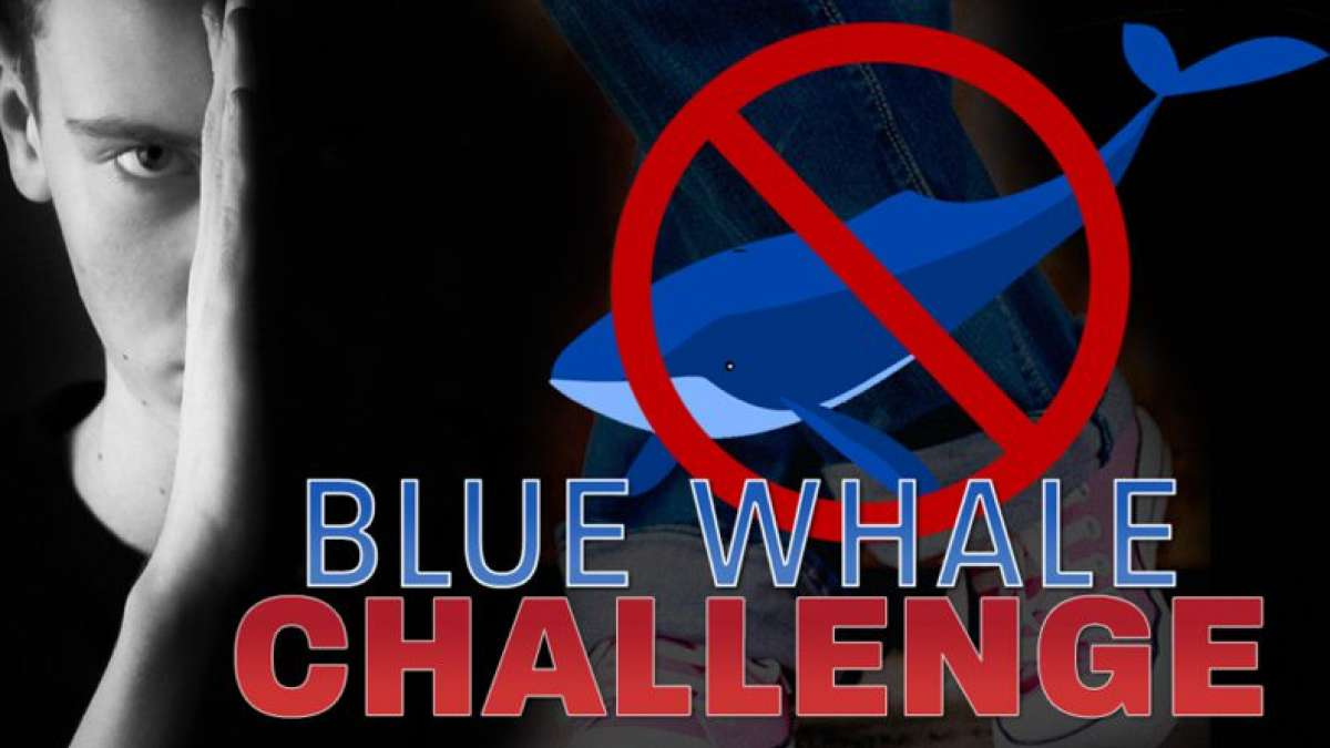 Blue Whale Game a nation problem: SC