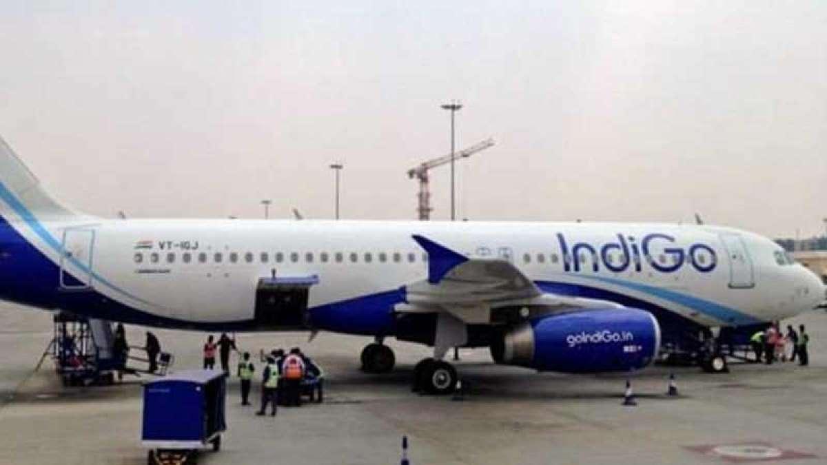 Bird hits Doha bound IndiGo flight 6E-1707, returns to Chennai