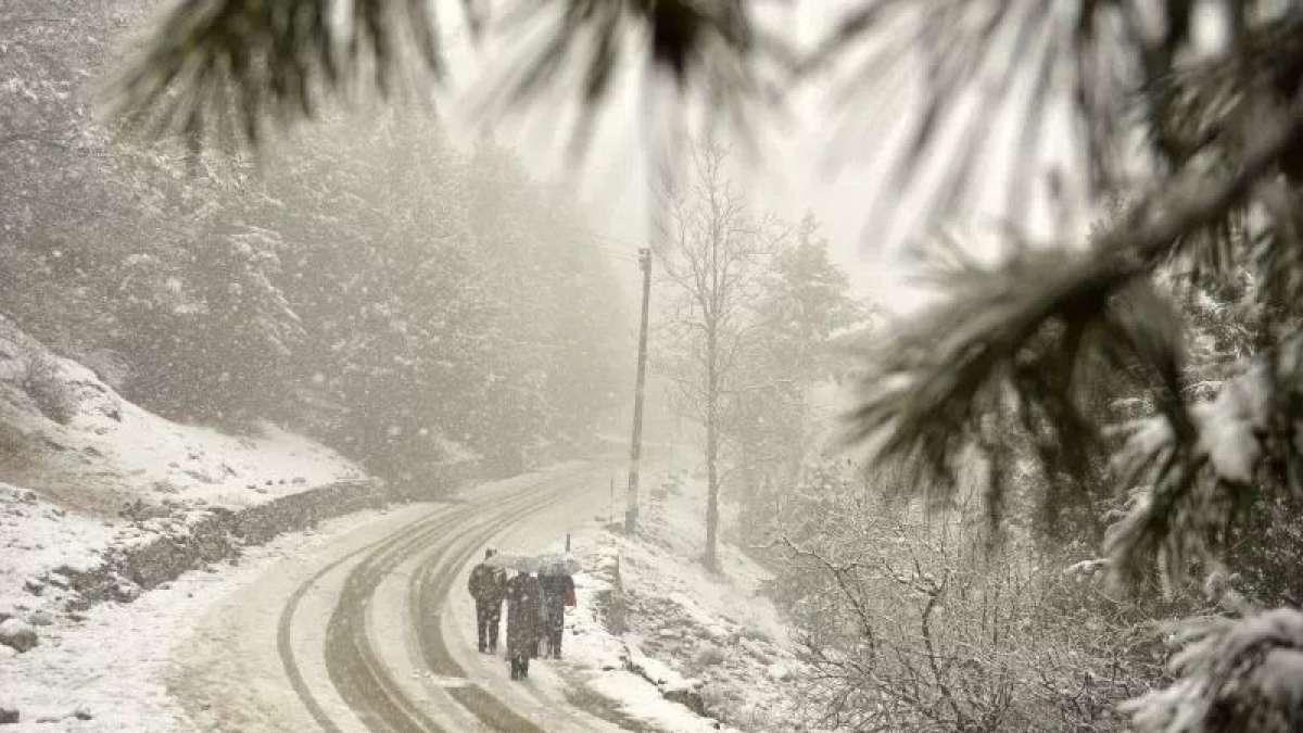 Coldest night in Srinagar, Leh frozen at minus 10.2