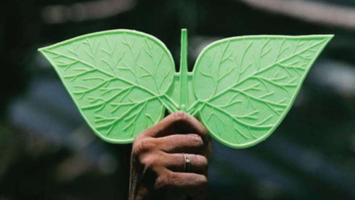 Unified AIADMK has won the two-leaves symbol after a long battle