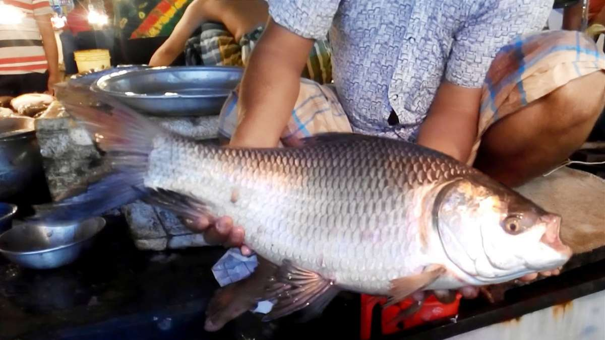 In June, Kerala food safety department officials caught nearly 9,600 kg of fish preserved in formalin at a border check post in Kollam district.