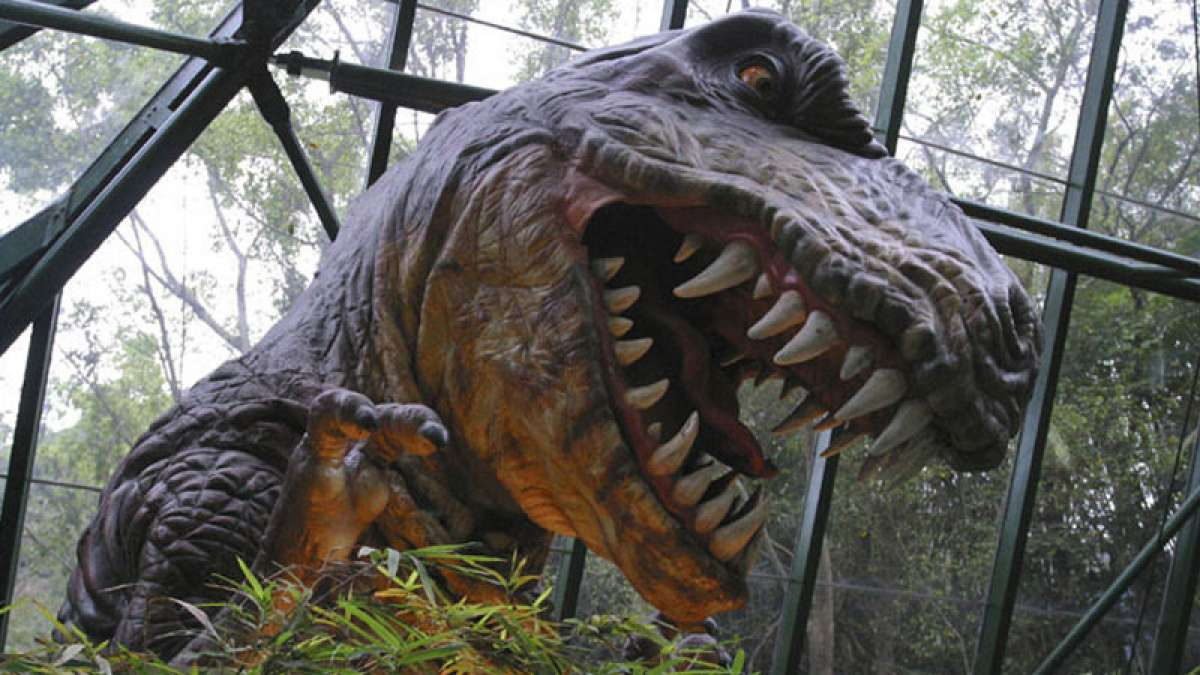 Dinosaurs liked perfumes that we enjoy today, says new study