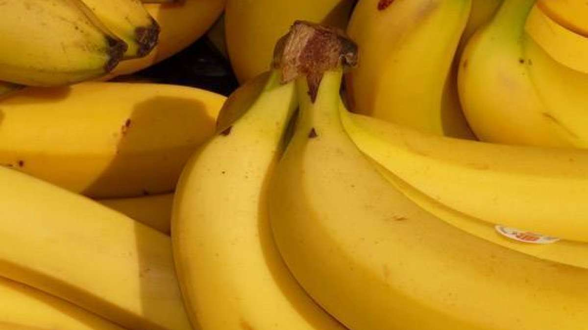 According to Ayurvedic science, eating bananas during the night does not harm health