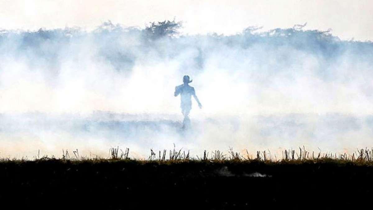 Crop burning smog evil to return in Delhi soon