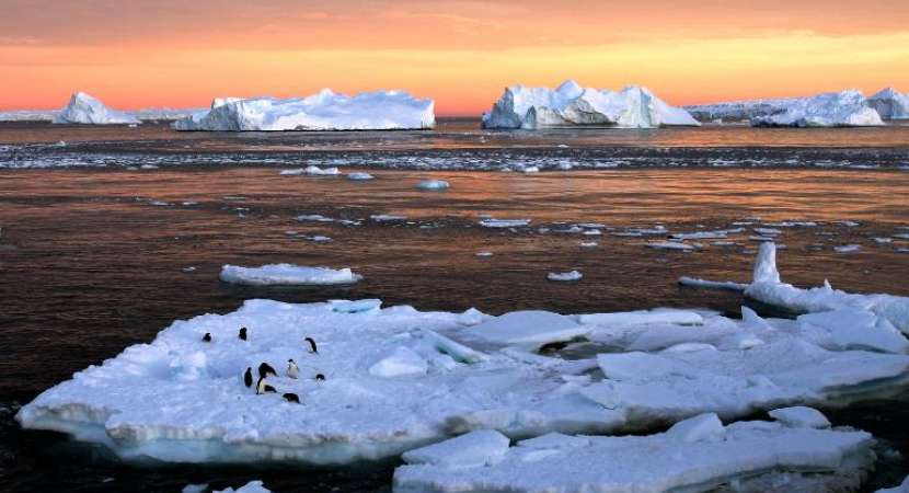 Man-made greenhouse gas emissions are warming the ocean (Photo: Reuters)