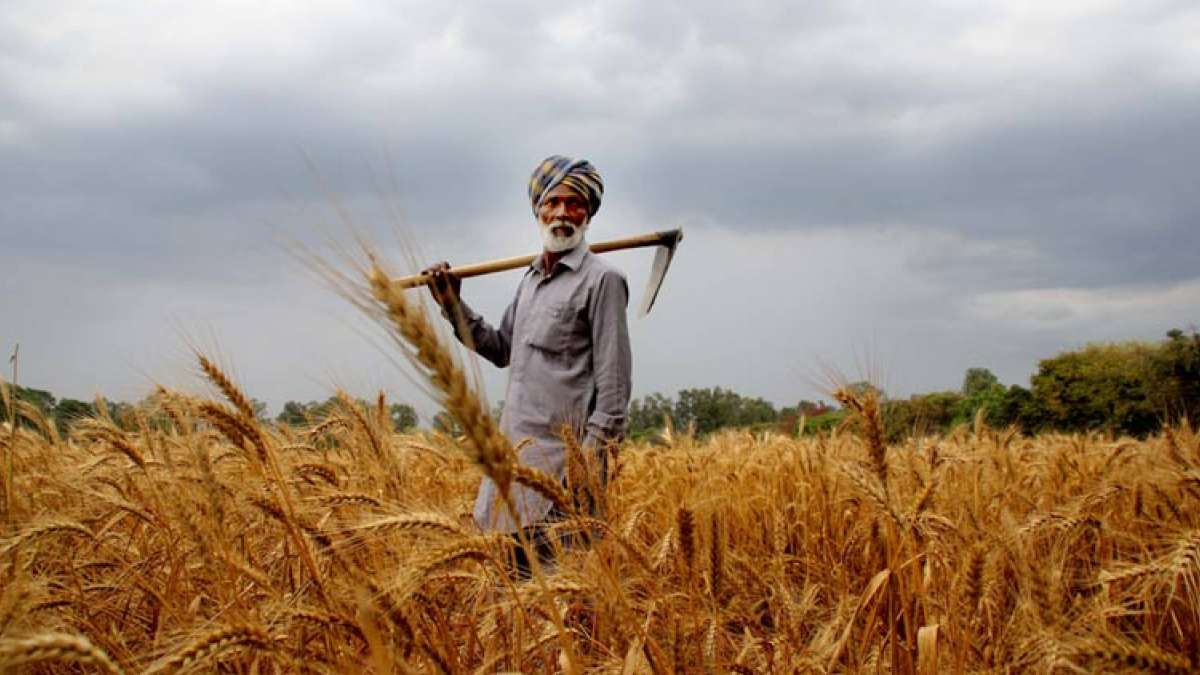 The politically-crucial interest subsidy for short term credit to farmers is likely to be a modest one in the vote-on-account which is to be presented by acting Finance Minister Piyush Goyal on Friday.