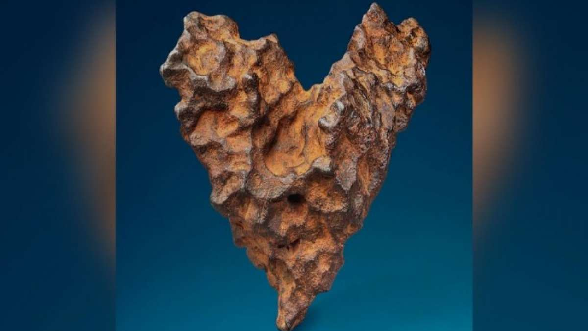 The  9-inch long meteorite is up for sale between Feb 6 and Feb 14