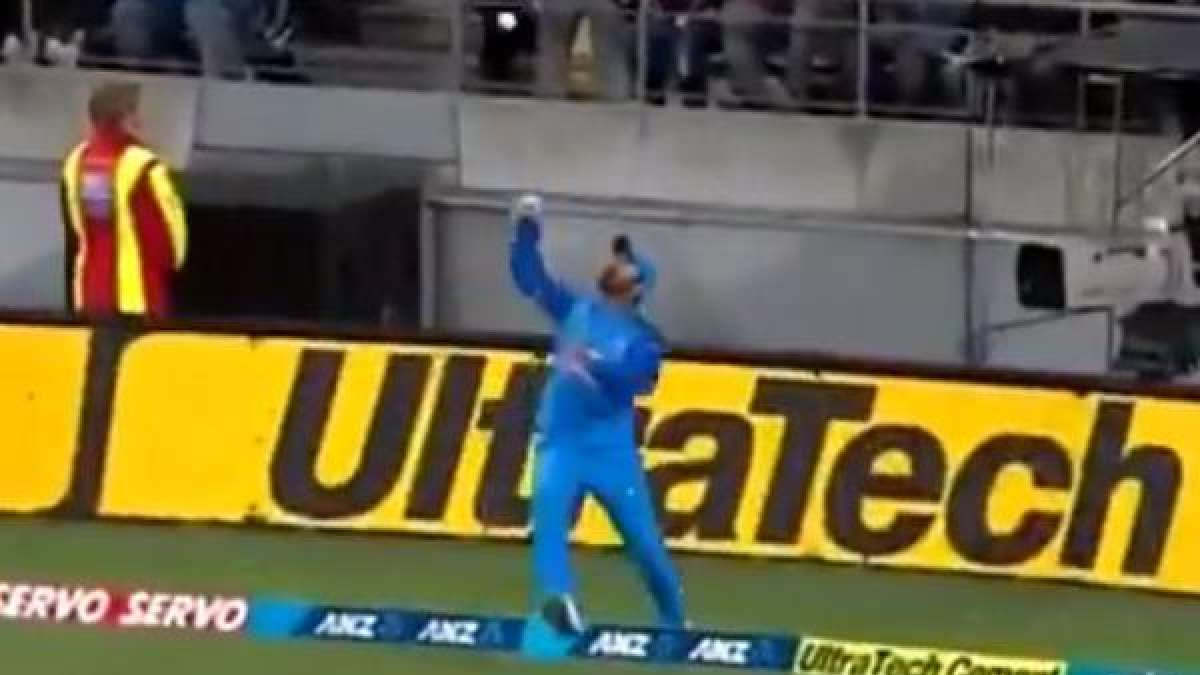 India vs NZ 1st T20: Dinesh Karthik's incredible catch at the boundary (Watch Video)