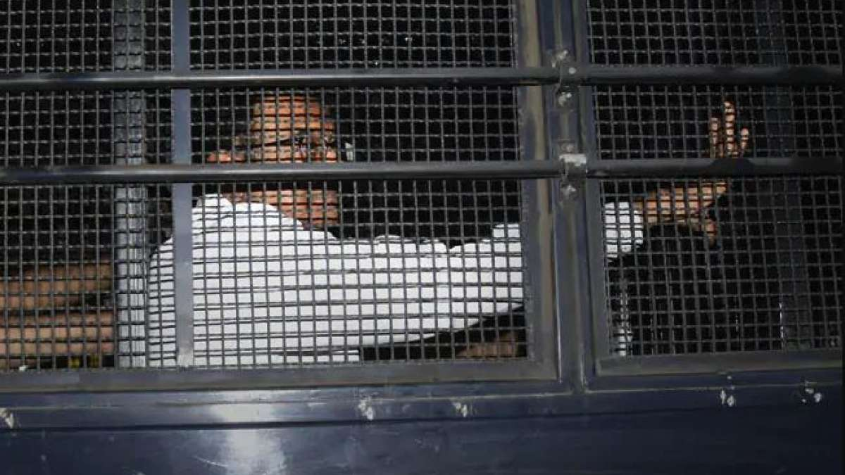 No special facilities for P Chidambaram in Tihar Jail: Officials