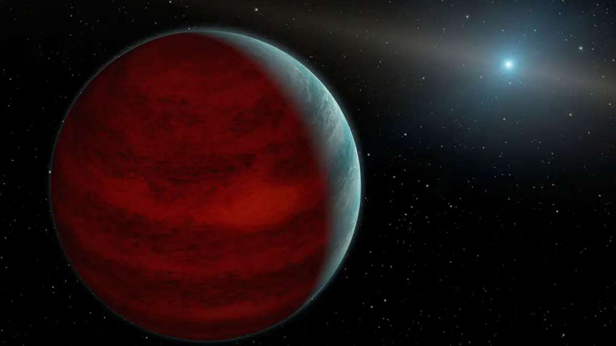 Astronomers spot a gigantic planet orbiting small stars