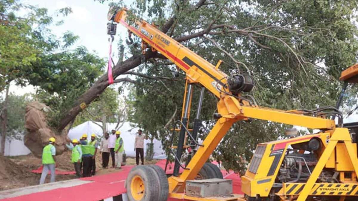29 activists arrested as bulldozers enter Mumbai Aarey to cut trees