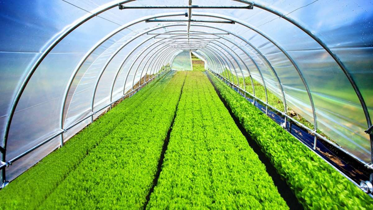 Hi-Tech Pipes launches awareness campaign on organic farming