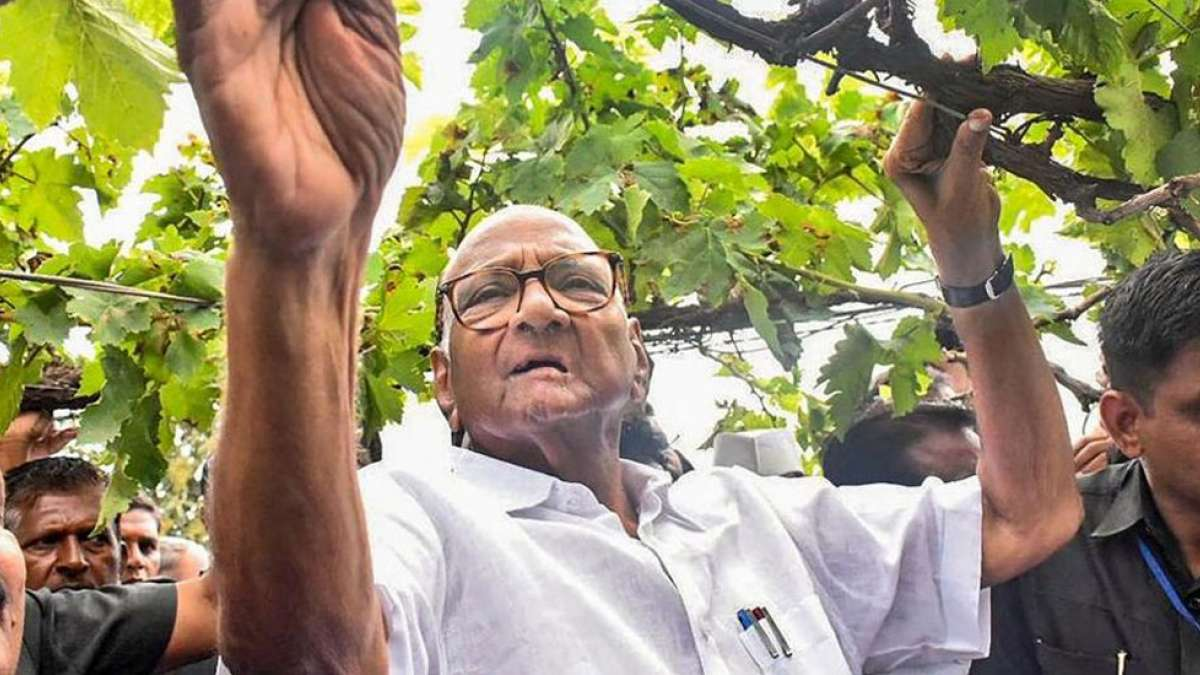 Ultimately, BJP-Sena will form government in Maharashtra: Sharad Pawar