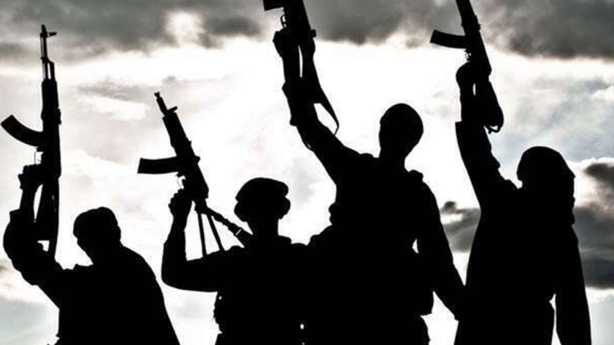 Islamic State group attempted suicide attacks in India last year: US Official